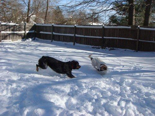 1st blizzard