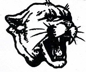 Cougar Hockey